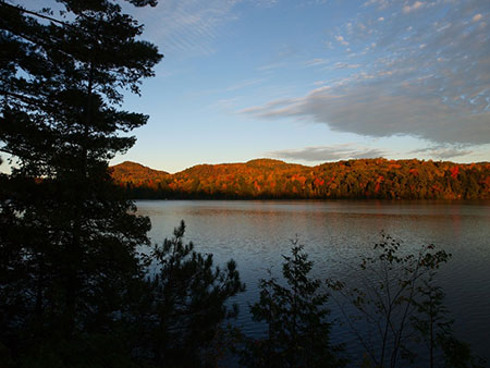 Early evening at long pond